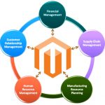 Enterprise Resource Planning: Magento 2 ERP Integration