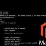 Magento 2 Command Line Tool (/bin/magento)