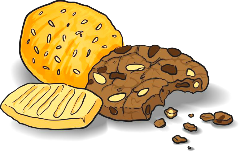 Web Security issues: Insecure Cookies