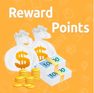 Reward Points Magento extension  Referral program Magento module