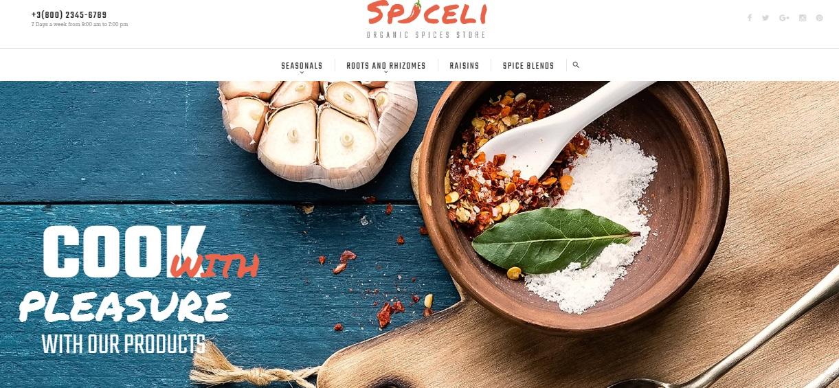 Spiceli Magento 2 Theme Review; Spiceli Magento 2 Template Overview