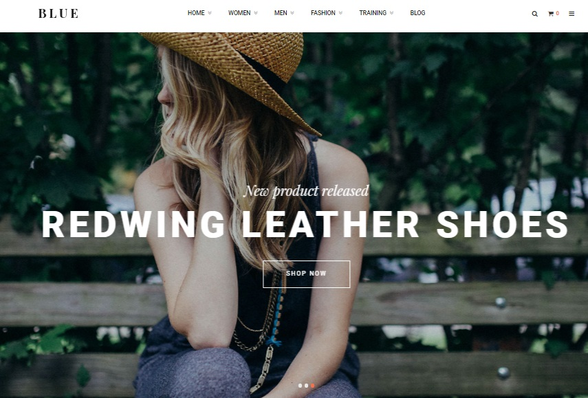 Ves Blue Store Magento 2 Theme Review, Ves Blue Store Magento 2 Template Overview