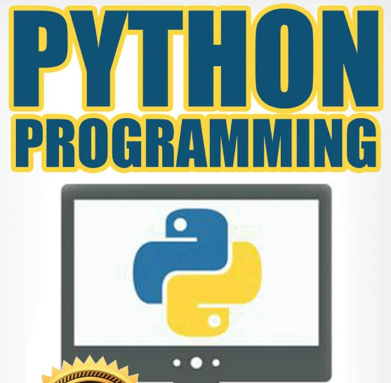 How To Code Like Real Pythonista (Best Python Books) | FireBear