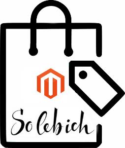 Magento 2 SoLebIch Connector