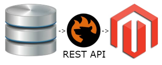 How to Import REST API data to Magento 2