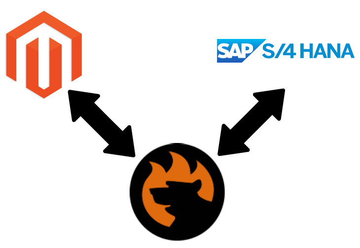 Magento 2 SAP S/4HANA Connector