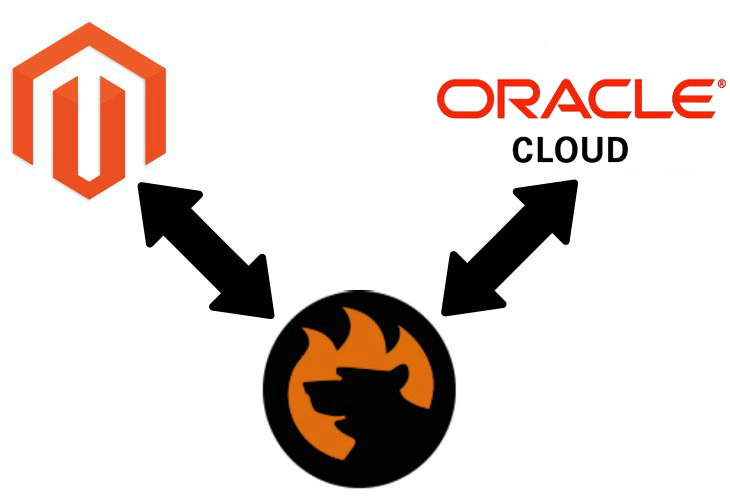 Magento 2 oracle cloud erp connector