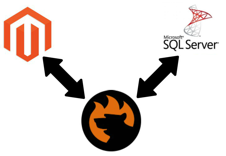 Magento 2 SQL Server data import