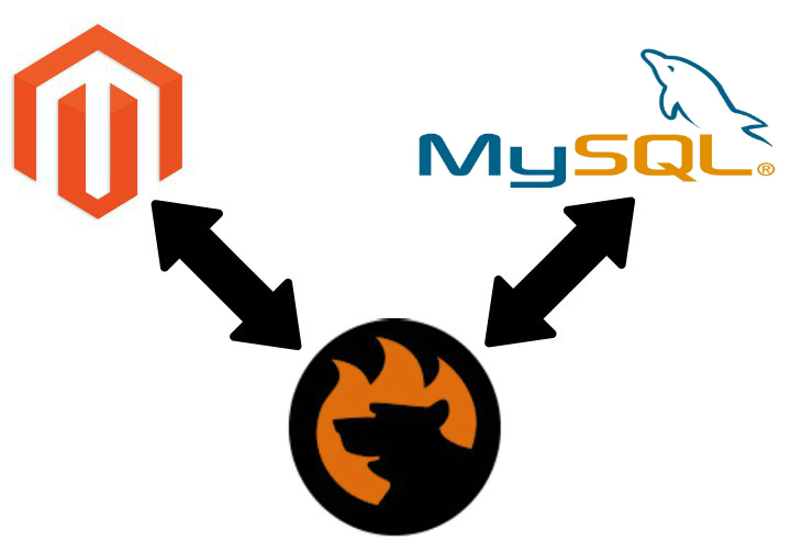 Magento 2 mysql data import