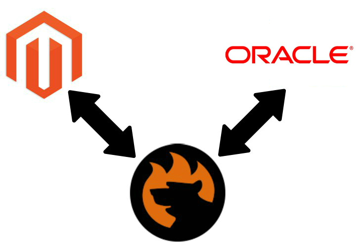 Magento 2 Oracle Data import