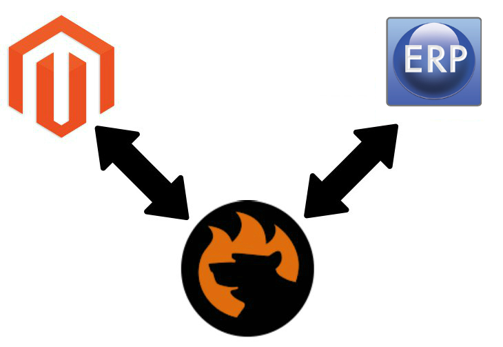 Magento 2 TrueERP connector