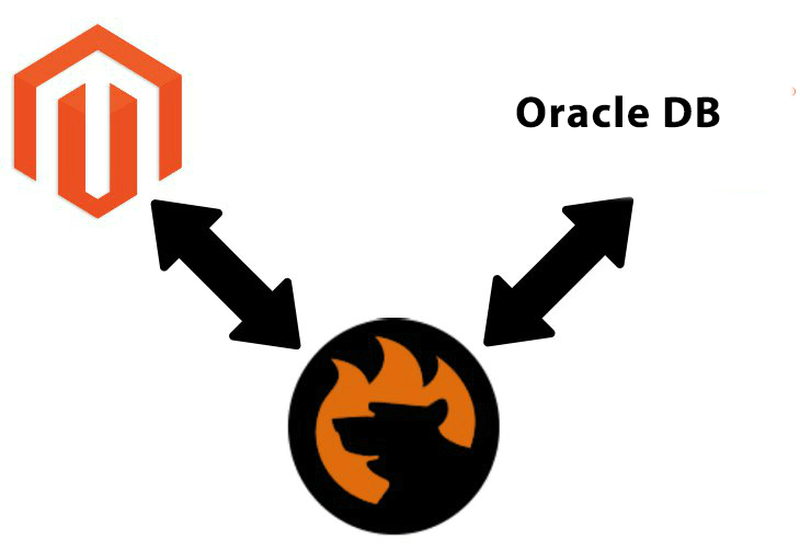 How to import data from external Oracle database to Magento