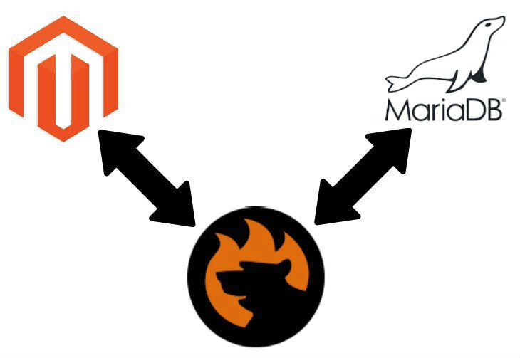 Magento 2 MariaDB Import Data