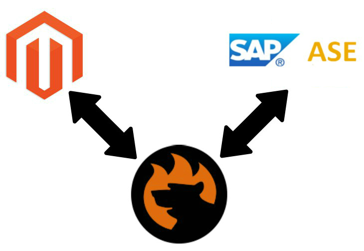 Magento 2 SAP ASE Sybase Data Import