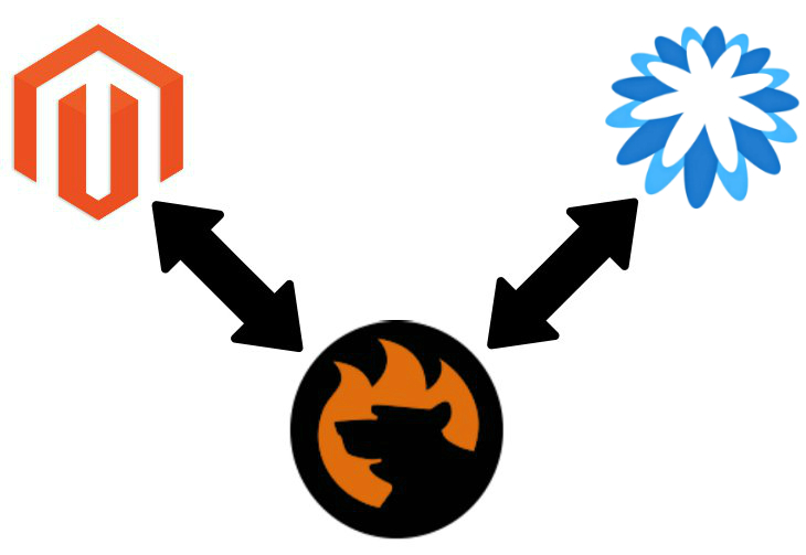 Magento 2 coupa integration