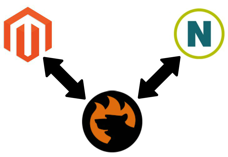 Magento 2 Netezza Data Import
