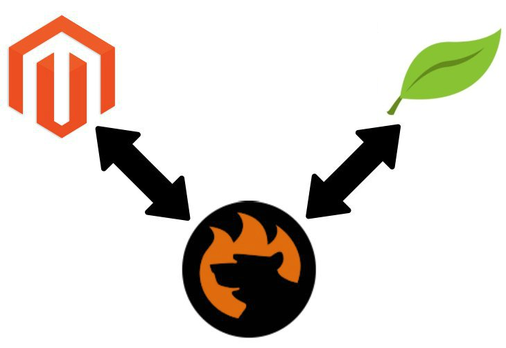 Magento 2 FreshBooks Integration