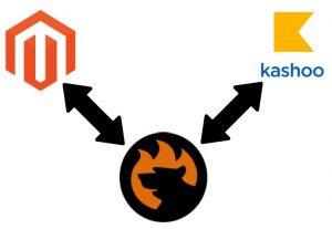 Magento 2 kashoo integration