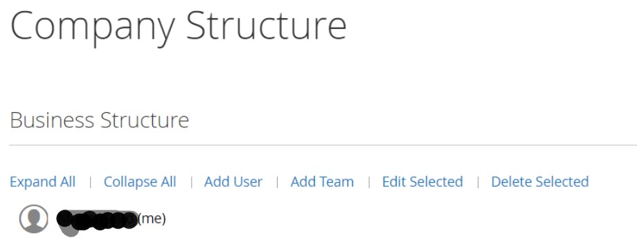Magento 2 company structure default