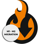 Free Magento 1 to Magento 2 Migration add-on