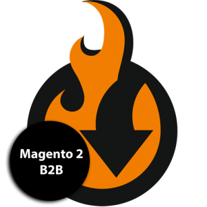 B2B import and export addon for Magento 2